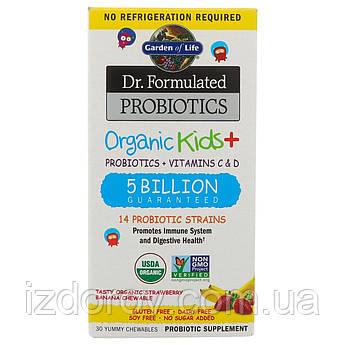 Garden of Life, Dr Formulated Probiotics, Органические пробиотики для детей, 30 жевательных таблеток