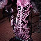 Кукла Дракулаура Коллектор (Monster High Draculaura Collector Doll), фото 8