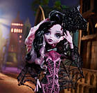 Кукла Дракулаура Коллектор (Monster High Draculaura Collector Doll), фото 9