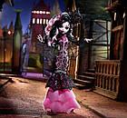 Кукла Дракулаура Коллектор (Monster High Draculaura Collector Doll), фото 10