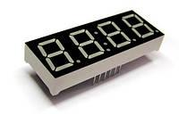 GNQ-5643BD (часовой - 4 символа через двоеточие) (индикатор семисегментный)