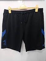 Спортивные брюки и шорты большого размера