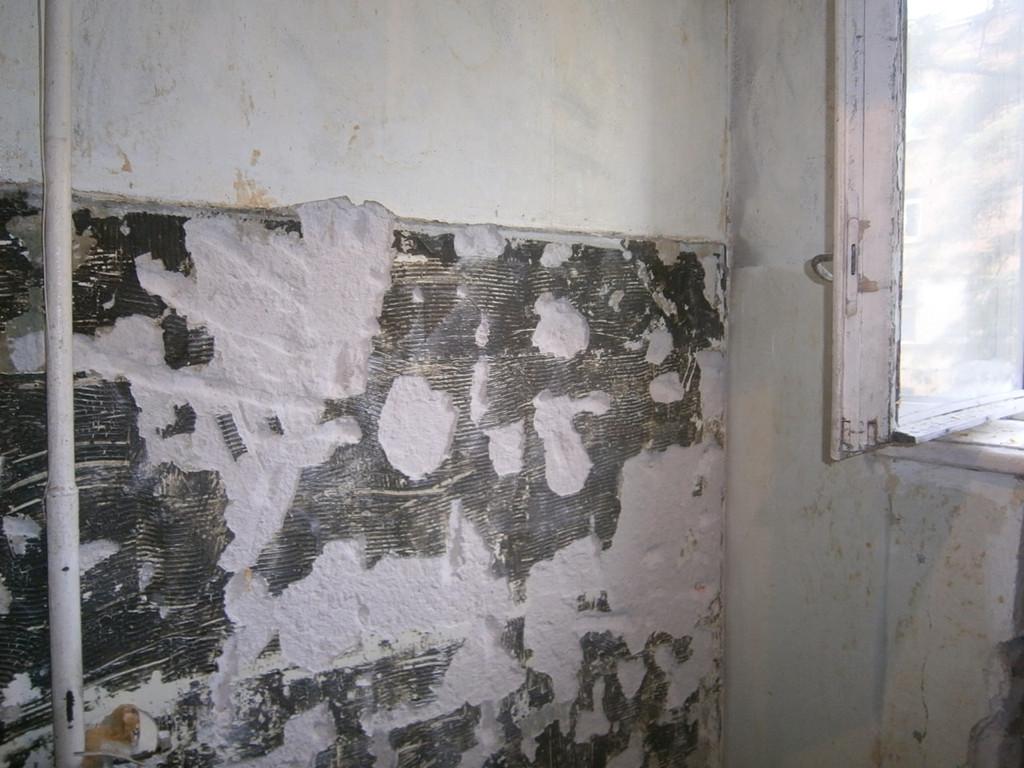 На кухне и в ванной комнате были оббиты кафель и бухтевшая штукатурка (плюс откосы), удалены все дверные коробки и вообще всё, что было в квартире. Остались голые стены и полы.