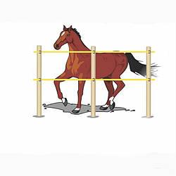 Електропастух для коней. Стаціонарний під дерев'яний стовпчик(комплект на 200 м.)