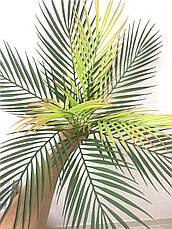 Искусственная пальма ( 50 см ), фото 3