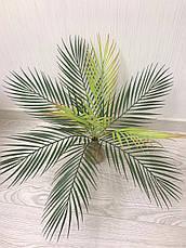 Искусственная пальма ( 50 см ), фото 2