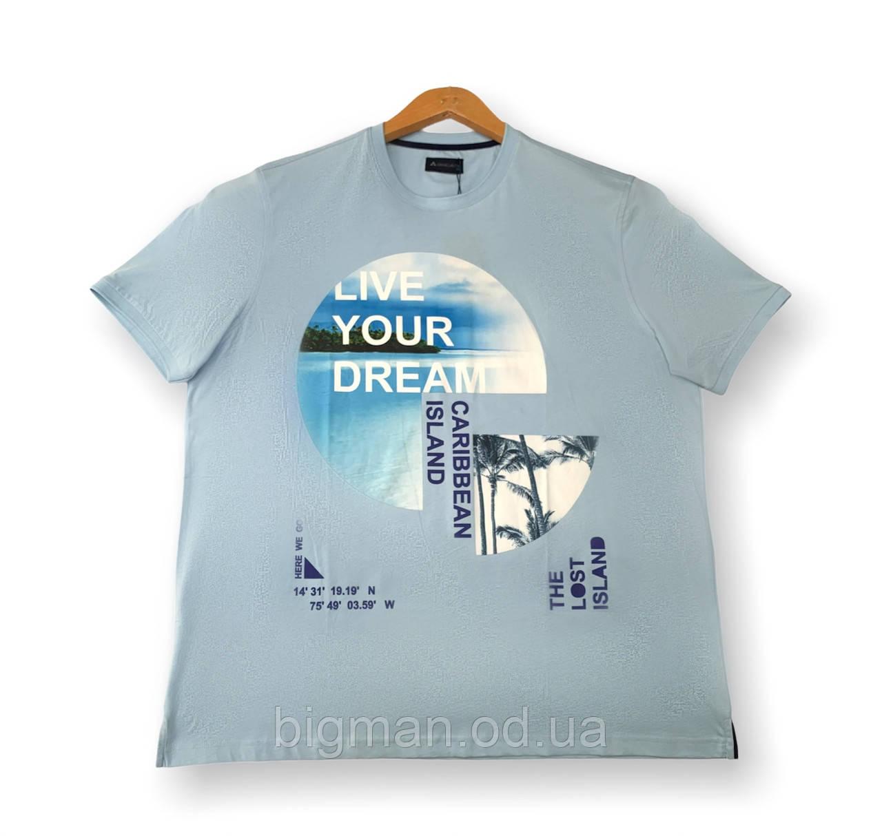 Чоловіча футболка блакитна батальна (великі розміри 4XL 5XL 7XL) Grand la Vita, Туреччина
