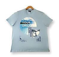Чоловіча футболка блакитна батальна (великі розміри 4XL 5XL 7XL) Grand la Vita, Туреччина, фото 1