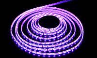 Лента светодиодная RGB 60 светодиодов в 1м