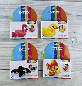 Надувная игрушка В коробке 58590+ Intex