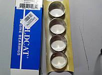 Вкладыши распредвала WILDCAT 1265 STD FORD GRANADA V6