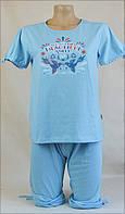 Женская пижама (фут. бриджи) (голубая)