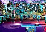 Дизайн - Строительство Комнат и Площадок Отдыха с Бассейном в Харькове, в Киеве, фото 3