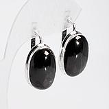 Срібні сережки з Диопсидом чорним зірчастим, 608СРД, фото 2