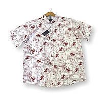 Мужская рубашка с коротким рукавом батальная белая льняная большие размеры (2XL 3XL 4XL) Турция Castelli, фото 1