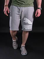 Мужские шорты Puma Gray
