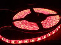 5050 60LED/m DC12V IP65 5M красный, белая подложка (HH-SR60F110W12-5050) Wisva 14.4Вт/м