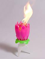 Свеча для торта музыкальная лотос