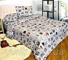 Комплект постельного белья Совы на сером