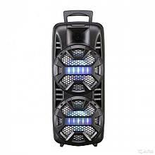 Колонка переносна з Bluetooth, світловими ефектами, пультом і мікрофоном для караоке LT-2805