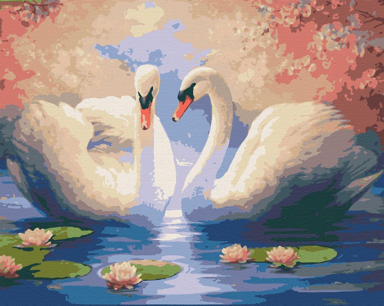 "Картины по номерам птицы лебеди размер 40х50 ""Белая пара"""