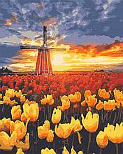 Картина по номерах природа млин 40х50 Голандія