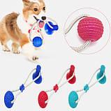 Іграшка для собак Woof Glider канат на присосці з м'ячиком, фото 2