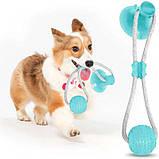 Іграшка для собак Woof Glider канат на присосці з м'ячиком, фото 3