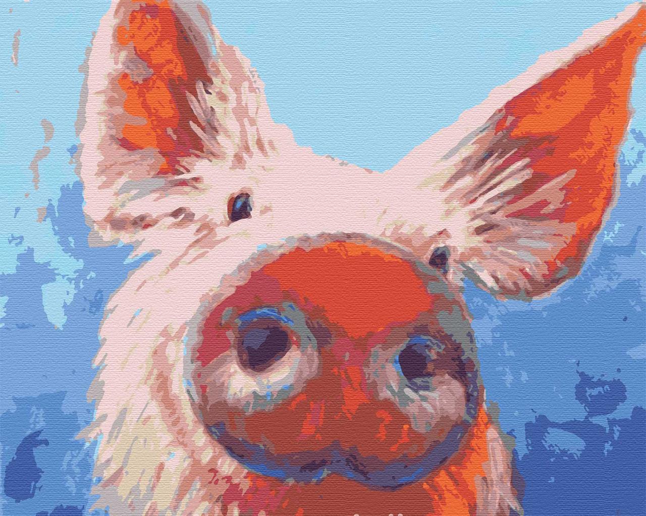 Картина по номерам животные свинья 40х50 Привет