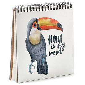 Блокнот Sketchbook (квадрат.) Попугай Тукан
