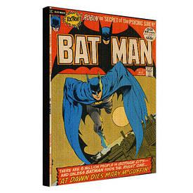 Картина на ткани, 45х65 см Bat man