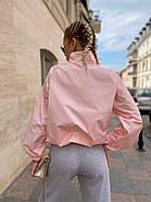 Жіноча вітровка з плащовки з об'ємними рукавами на резинці, 00807 (Пудра), Розмір 48 (XL), фото 3
