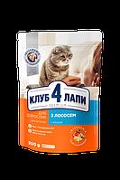 Влажный корм для взрослых кошек Club 4 Paws (Клуб 4 Лапы) Премиум с лососем в желе 24 пачки по 100 г