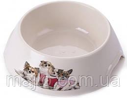 Миска пластиковая для собак P 1118-PP-B7 с принтом M 0.3 л (2000981121464)