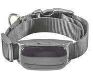 GPS трекер для собак і кішок