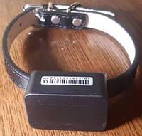 GPS трекер нашийник, вологостійкий для тварин собак і кішок