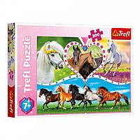 Детский Пазл Trefl Красивые лошадки из 200 элементов, 13248