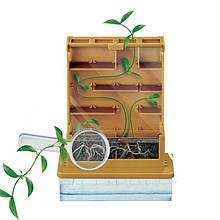 """Детский научный игровой набор Lesko DIY 1001 """"Удивительные растения"""""""