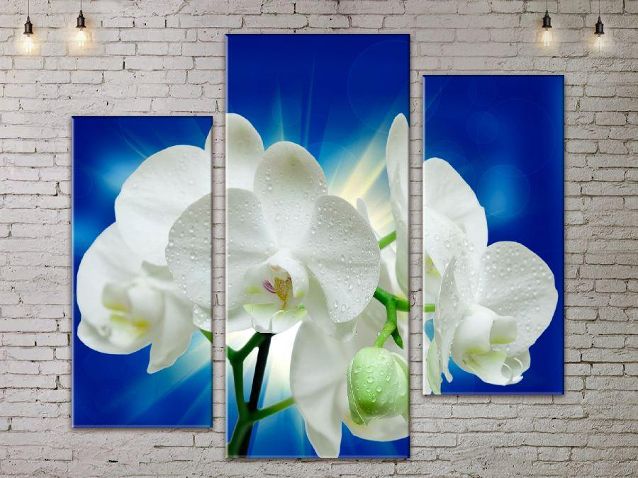 Модульная картина ArtStar цветы Орхидея ADFL0206 размер 150 х 180 см