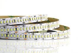 """Светодиодная LED лента гибкая 12V PROLUM IP20 3014\240 Series """"S"""", Белый (5500-6000К)"""