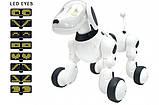 Багатофункціональна інтерактивна робот-собака 619 на радіокеруванні світлові і звукові ефекти, фото 7