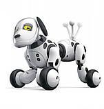 Радиоуправляемая собака-робот ZYA-A2917 двигается, глаза с эмоциями, общается на русском языке, фото 9