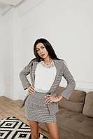 Костюм деловой с юбкой серый в гусиную лапку, фото 1