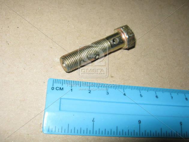 Болт-штуцер (вир-во ПМЗ), фото 2