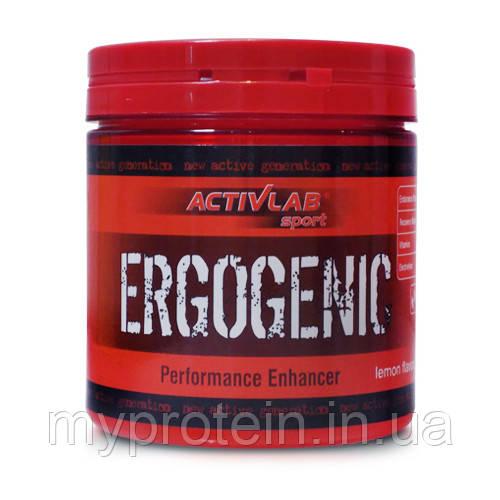 Предтреник Ergogenic (360 g )