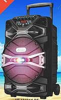 """Колонка блютуз аккумуляторная UF-1318AK-DT 12"""" динамик с 2 микрофонами"""