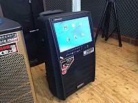 Портативная колонка c экраном SL12-13 с 2 микрофонами / 200W