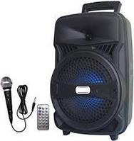 NEW ! Активная блютуз колонка c аккумулятором, микрофон, пульт Ailiang LiGE A88