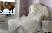 Одеяло 195х215 с верблюжьей шерстью Penelope CAMELLO.