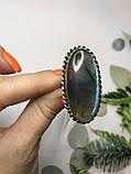 Кольцо лабрадор в серебре кольцо с лабрадором 16,2 размер Индия, фото 5